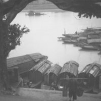 021. Sampans and tree, Wuchow