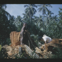 Rimon, Rema's son, standing nude on the stump of the…