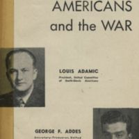 Foreign-born Americans and the war
