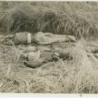 Two soldiers killed in Okinawa