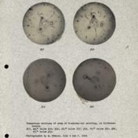 Physiology-Soils PM Negatives 017-020