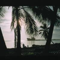 Sunset Majuro T2206