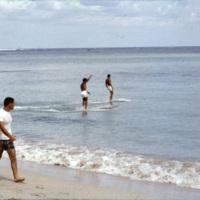 Surfers at a beach