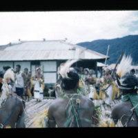 [Kaya Pulau, Jayapura, West Papua (Indonesia)?] [451]