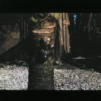 Two shots of a coconut crab. [1st shot]