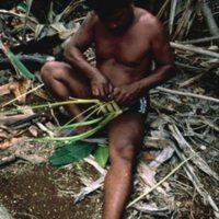 Man Weaving Palm Leaves - 18