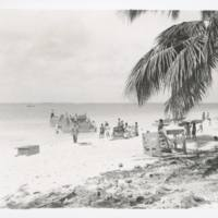 [0404 - Rongelap Atoll, Marshall Islands]