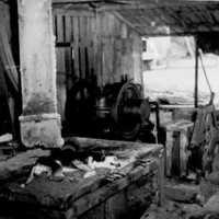 Former Japanese sawmill, Kusaie, c1953. (N-2756.03).