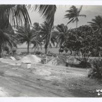 [0418 - Rongelap Atoll, Marshall Islands]