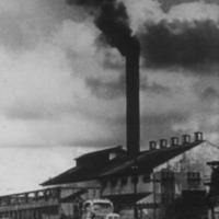 Smoke Stack [sugar mill]