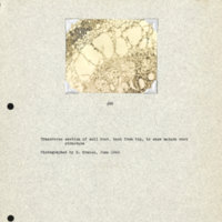 Physiology-Soils PM Negative 095