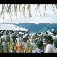 [Kaya Pulau, Jayapura, West Papua (Indonesia)?] [421]