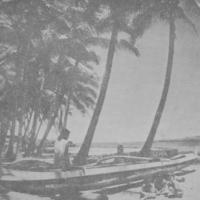 [065] Outrigger Canoe