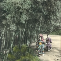 [two girls in kimono strolling the bamboo path]