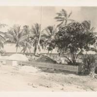 Rongelap graveyard