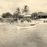Unknown Oahu 25