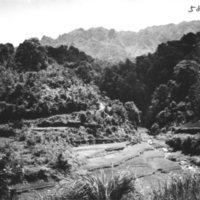 589. Near Kung Ya (?) : valley
