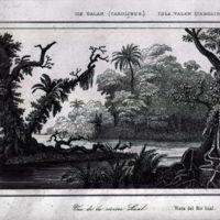 Ile Ualan (Carolines); Vue de la riviere Lual
