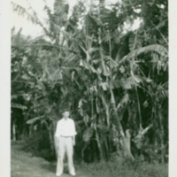 [112] Man in front of Banana Trees
