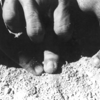 Fingers in the Sand