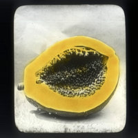 Papaya cut in half showing seeds