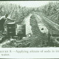 "[096] ""Applying nitrate of soda in irregation water"""