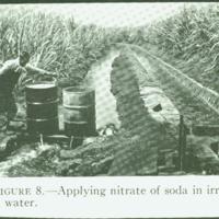 "[096] ""Applying nitrate of soda in irregation water"""