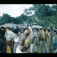 [Kayupulau, Jayapura, Papua (Indonesia)?] [428]