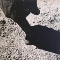 Finger in the Sand