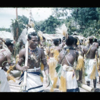 [Kayupulau, Jayapura, Papua (Indonesia)?] [413]