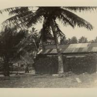 [0049 - Arno Atoll, Marshall Islands]