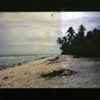 Two shots of Kili beach taken on the ocean (beach) side…
