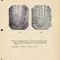 Physiology-Soils PM Negatives 123-124