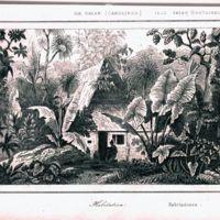 Ile Ualan (Carolines); Habitation