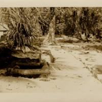 [0047 - Arno Atoll, Marshall Islands]