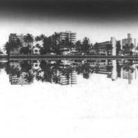 Waikiki Reflection on Ala Wai