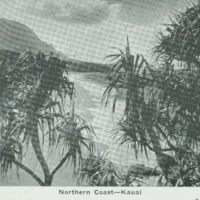 [087] Nothern Coast - Kauai