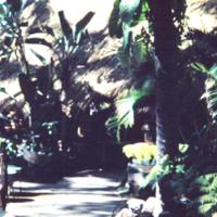 [Entry walkway]