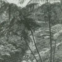 [089] Hiking Trail