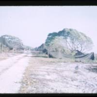 Ebeye Housing March 1954