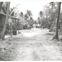 [0338 - Rongelap Atoll, Marshall Islands]