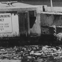 Garbage in harbor