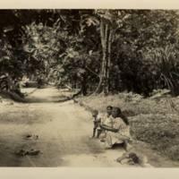 [0064 - Arno Atoll, Marshall Islands]