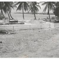 [0340 - Rongelap Atoll, Marshall Islands]
