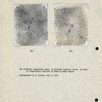 Physiology-Soils PM Negatives 061-062