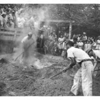 Hawaii War Records Depository HWRD 1347