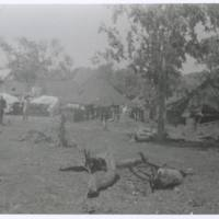 Administration section 5AGH. N. Guinea '43