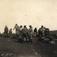 German sailors butchering at Easter Island Oct 1914 Mr…