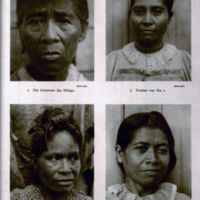 Sarfert, Kusae, Tafel 12