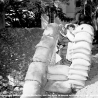 Hawaii War Records Depository HWRD 0177